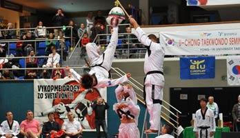 perex-taekwondo