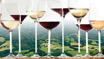 Pekné víno v Malohonte