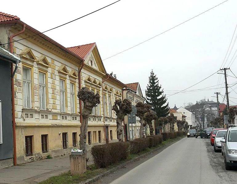 daxnerova ulica